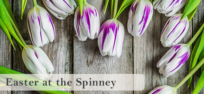 Easter at the Spinney
